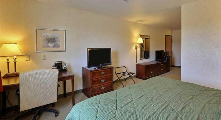 Single King Suite