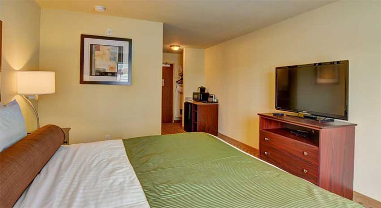 Single King Guestroom